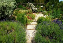 © 2014 New Life Landscapes and Garden Services